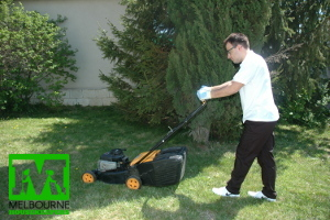 Licensed gardening service by Melbourne Housekeepers