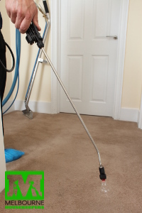 Carpet cleaners spraying the carpet with solution